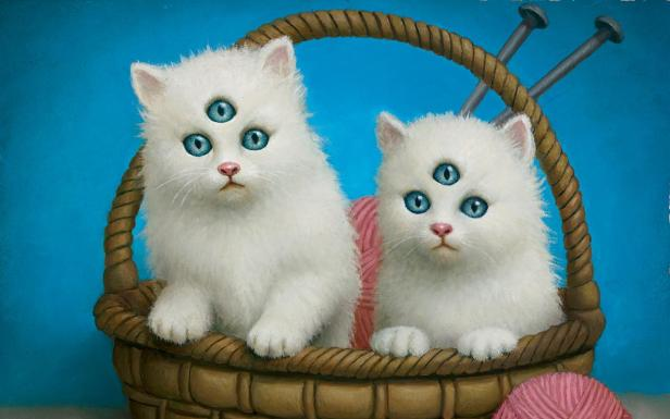 cute-talking-cat-android-apps